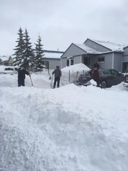 Cyclone Kleen Up crews help Leadville, CO residents