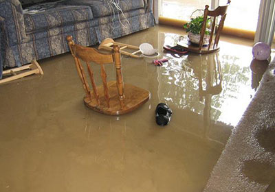 Why You Need to Act Fast After Water Damage